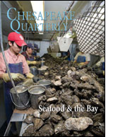 oysters at Harris Seafood - Photograph, Skip Brown