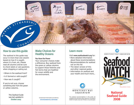 Seafood Watch - front part of pamphlet