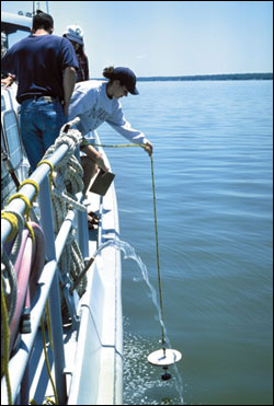 Student lowering a secchi disk - photo by Sandy Rodgers