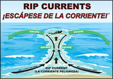 bilingual rip current illustration