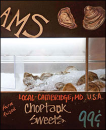 Choptank Sweets and Choptank Salts by Michael W. Fincham