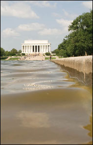 Reflecting pool near the Lincoln Memorial by Michael W. Fincham