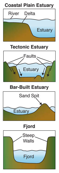 Types of Estuaries, Source: Office of Naval Research