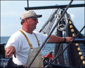 Rogers and his crew haul in a net full of menhaden by Harold Anderson for the Smithsonian Center for Folklife and Cultural Heritage