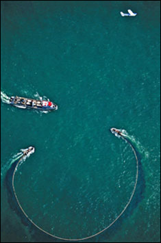 two skiffs to encircle the school with a purse seine net by www.oceansart.us