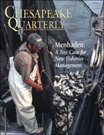 issue cover - More pounds of menhaden are landed each year than any other fish in the Chesapeake. The fish is valuable not only commercially but for the ecosystem - it provides food that sustains striped bass and ospreys and many other predatory fish and birds. With menhaden stocks at their lowest point in half a century, is it time to try a different kind of management? Photograph by Harold Anderson For the Smithsonian Center for Folklife and Cultural Heritage