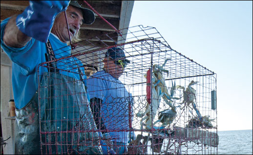 Bobby Abner and Donny Eastridge with a crab pot. Credit: Michael W. Fincham.