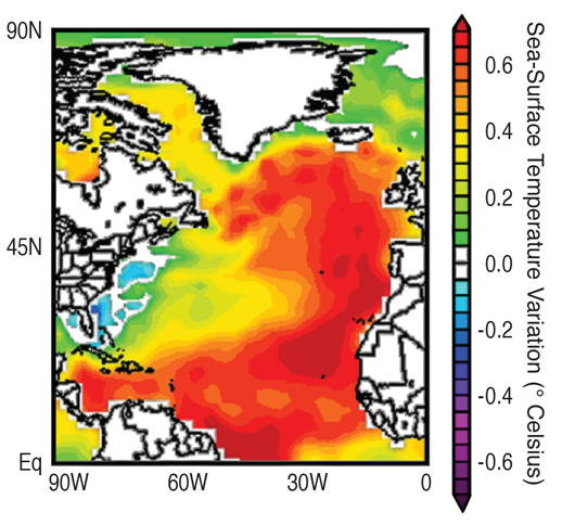 AMO map. Credit: NOAA Earth System Research Laboratory