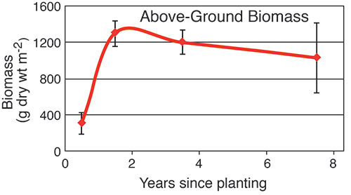Above-ground biomass. Graph source: Data courtesy of Lorie Staver