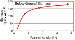 Below-ground biomass. Graph source: Data courtesy of Lorie Staver