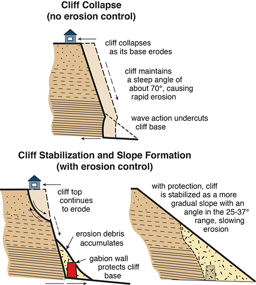 Erosion at Calvert Cliffs ways illustrations adapted by Sandy Rodgers from figures in Clarke et al. 2004