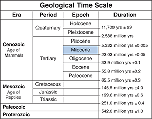 Geologic time scale adapted from a USGS graphic