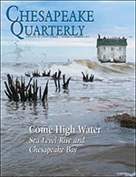 issue cover - This house on Holland Island in the Chesapeake Bay stood for more than a century. But the estuary's water level rose, the island eroded, and the inhabitants left. In 2010, the house - the last one left on the island - was swept into the Bay by encroaching waves. Photograph, David Harp.