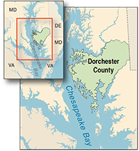 Dorchester County courtesy of University of Texas Map Library