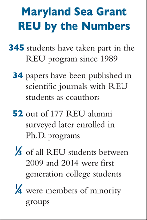REU by the Numbers