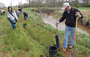 Volunteers plant trees beside Tuscarora Creek. Credit: Chesapeake Bay Foundation