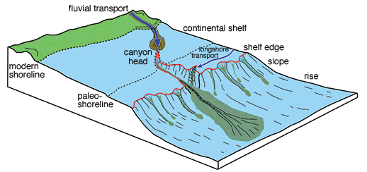 Geological forces formed the Mid-Atlantic's deep submarine canyons. Adapted from J. Obelcz et. al., Deep-Sea Research II 104: 106-119 (2014)