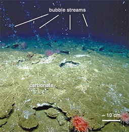 Methane seeps bubbling up. Credit: Nature Geoscience, 7:657 (2014)