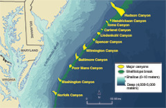 Underwater canyon map along the Atlantic coast. Credit: NOAA-OER/BOEM/USGS