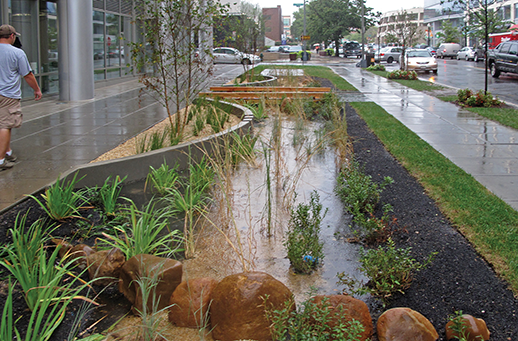 Rain garden on First Street, N.E., Washington, D.C. Credit:  D.C. Department of Energy and Environment