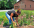 Belinda Thomas, wife of the minister, cleans up one of the five gardens at Empowering Believers Church of the Apostolic Faith in Glen Burnie, Maryland. Photograph, Michael W. Fincham