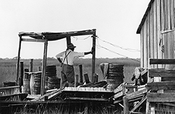 On marshy, isolated Smith Island, a crabber waits for the first peeler. Photograph courtesy of Mame Warren