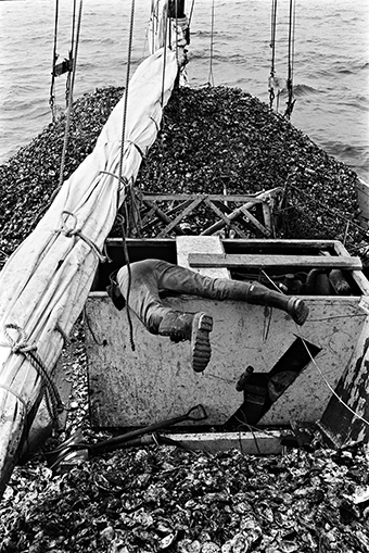 A skipjack is loaded down during shell-moving season. Photograph courtesy of the Chesapeake Bay Maritime Museum