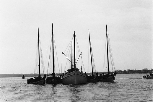 Four skipjacks raft up to sell their oysters to a buyboat. Photograph courtesy of the Chesapeake Bay Maritime Museum