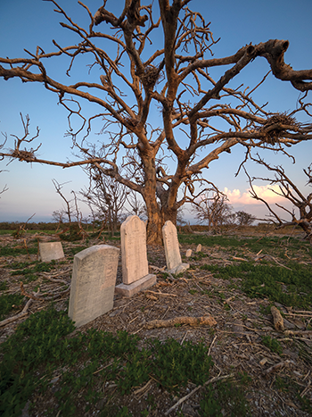 Gravestones recall past lives on now-deserted Holland Island. Photograph courtesy of David Harp