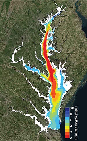 Summer 2015 conditions, red and dark orange indicate deep areas with deprived of oxygen. Graphic by Aaron Bever (Anchor Qea) And Marjorie Friedrichs (Virginia Institute Of Marine Science)