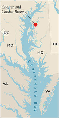 Chesapeake Bay map showing the Chester and Corica Rivers. Map, Sandy Rodgers and iStockphoto.com