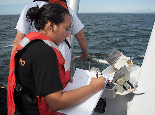 REU student recording data during a summer cruise. Photographer, Nicole Lehming