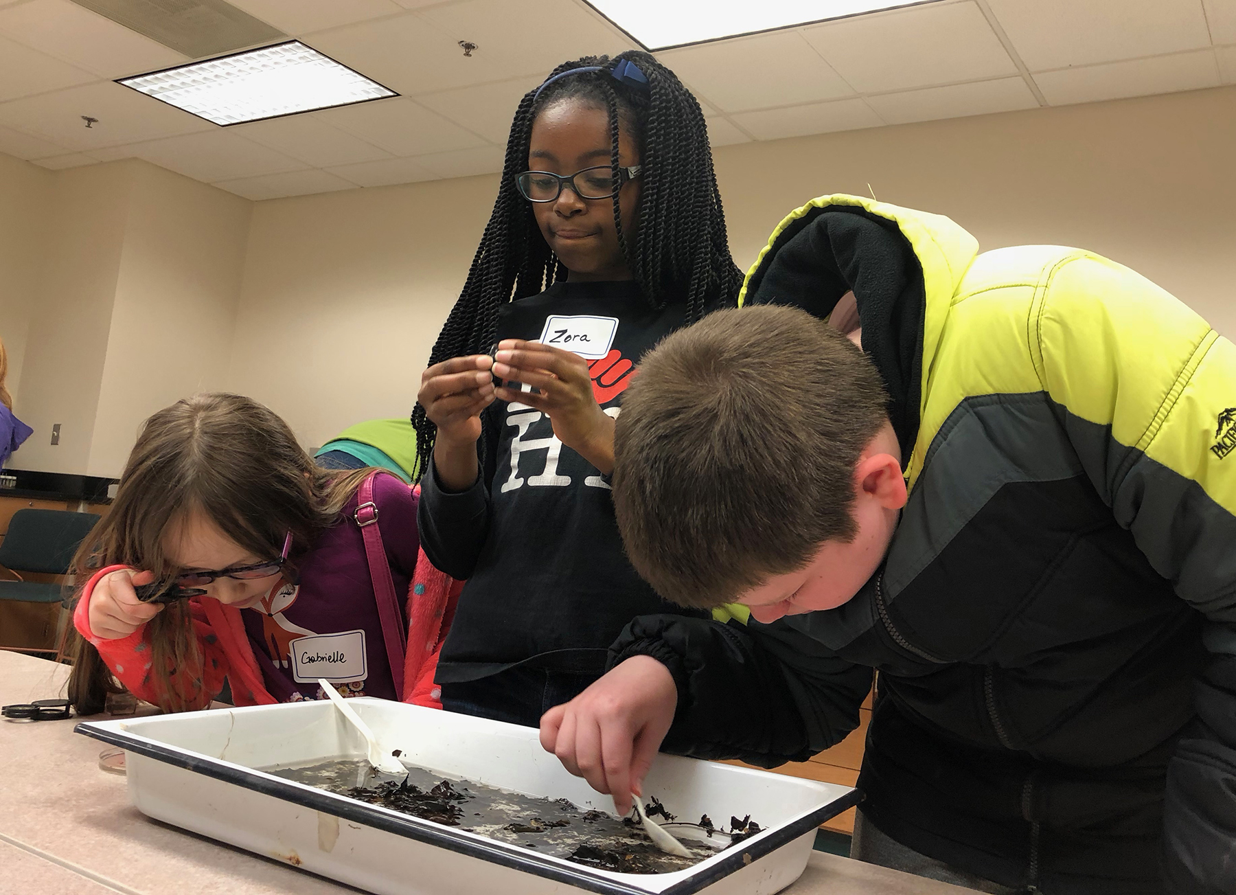 Local students Gabrielle Rinard, Zora Edmondson, and Kevin Rinard (left) look for bugs in the Appalachian Laboratory.