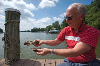 Jim McVey grows two kinds of oysters by Michael W. Fincham