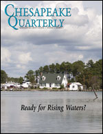 issue cover - flooded Eastern Shore near Hoooper's Island by Erica Goldman