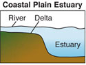 Coastal Plain Estuary