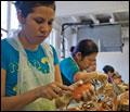 A line of women, most in the U.S. on guest worker visas, pick crabs at the J. M. Clayton Seafood Company in Cambridge, Maryland. Credit: Daniel Strain.