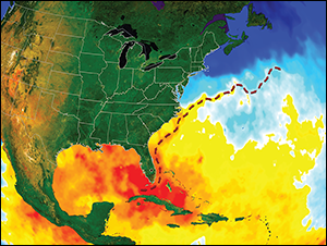Gulf Stream. Credit: National Aeronautics and Space Administration Visualization Studio with arrows added by Sandy Rodgers