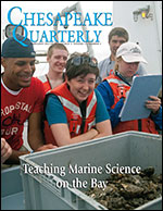 issue cover - student fellows on their orientation cruise for Maryland Sea Grant's Research Experiences for Under¬graduates program in summer 2013 pore over a bucket filled with oysters: (from left to right) Arthur Williams, Zachary Watkins, Jenessa Duncombe, Nicholas Taylor, Christine Schalkoff. Credit: Sandy Harpe