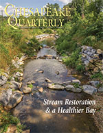 issue cover - Watts Branch, a tributary of the Anacostia River in Washington, D.C. In 2011, work was completed to install a series of pools and add rock structures to slow the flow of water. Photograph, David Harp