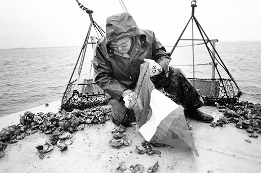 The late George Krantz sorting oysters. Photograph by Skip Brown